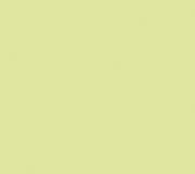 DuPont_Corian_Lime_Ice-1-1024x768