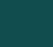 S119_Evergreen_size-2_RGB