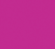 S116-Festival_Pink