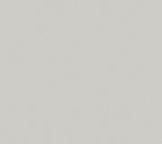 S005_Grey_300dpi_RGB
