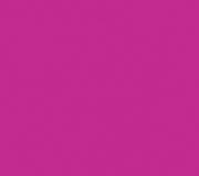 S116_Festival_Pink_300dpi_RGB