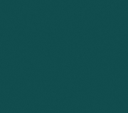 S119_Evergreen_300dpi_RGB.jpg