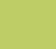 S212_Light_Green_300dpi_RGB