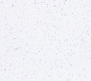 W001_Ice Queen_300dpi_RGB