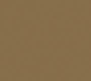 S104_Toffee_Brown_300dpi_RGB